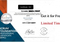 Scrum Foundations Professional Certificate